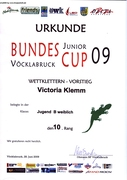 Urkunde JuniorCup 2009